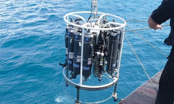 פריחות של מיקרו-אצות וחיידקים כחולים בסביבה המימית והסיכונים מהן