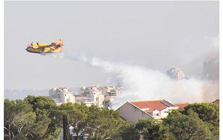 הקטנת הרגישות לשרפות ושיקום שטחי יער וחורש במרחבים עירוניים – חקר מקרה חיפה