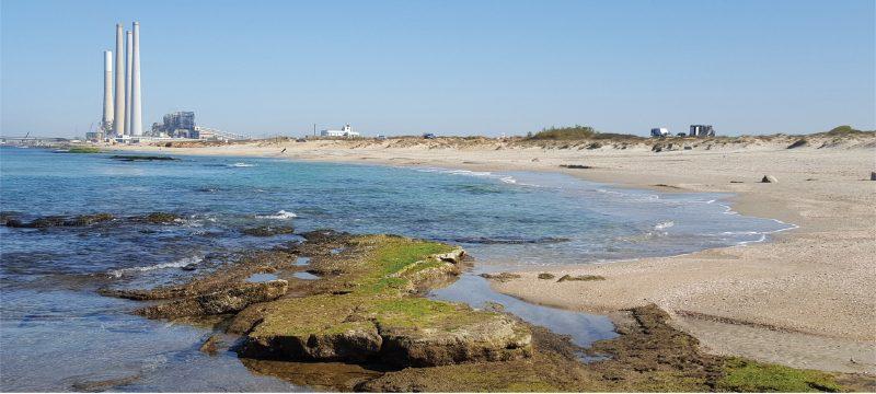 הקצאת חופים לעגינת יאכטות פרטיות או לרחצה ציבורית? ערעור על קביעת סדרי עדיפויות לאומיים