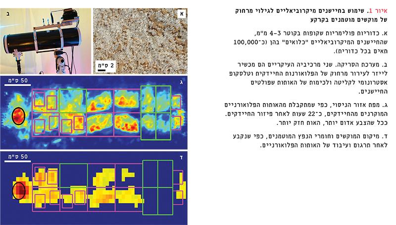פיתוח חיישנים מיקרוביאליים לגילוי מרחוק של מוקשים מוטמנים בקרקע