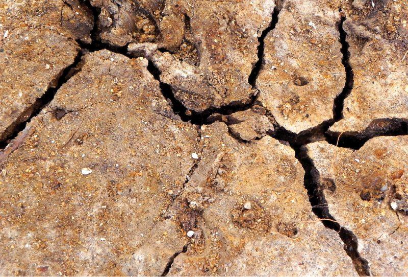 אסטרטגיה להיערכות לשינוי האקלים – איך קובעים סדרי עדיפויות לפעילויות הממשלה?
