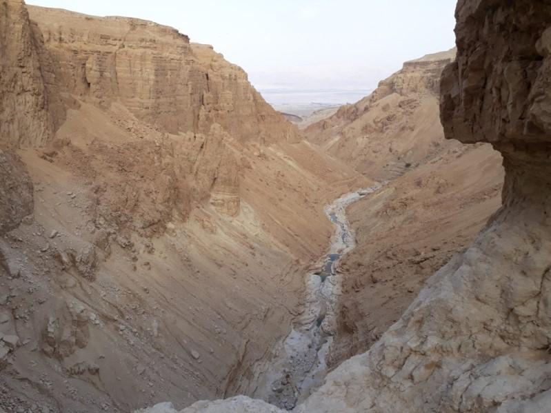 שלוש שנים לאחר זיהום נרחב בנחל אשלים – הערכת מצב לפי תוכנית הניטור
