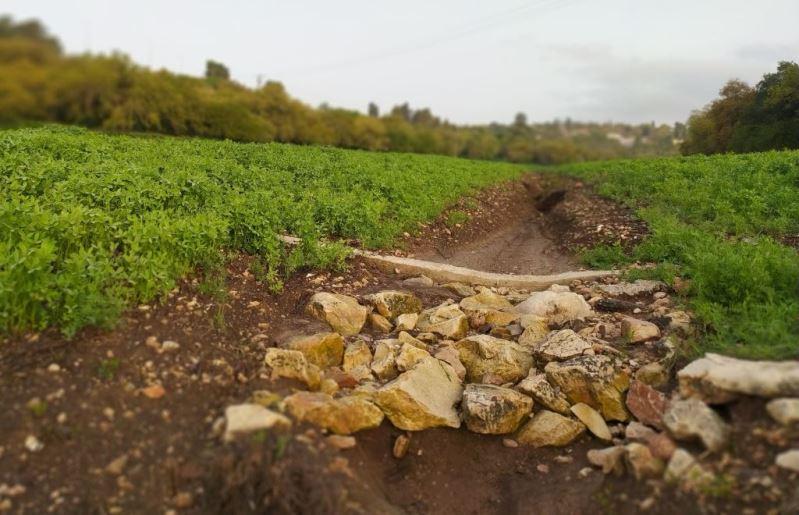 כדאיות כלכלית של שימוש בממשקי שימור קרקע כנגד סחיפה והגרעה של קרקעות בשטחי חקלאות פתוחים