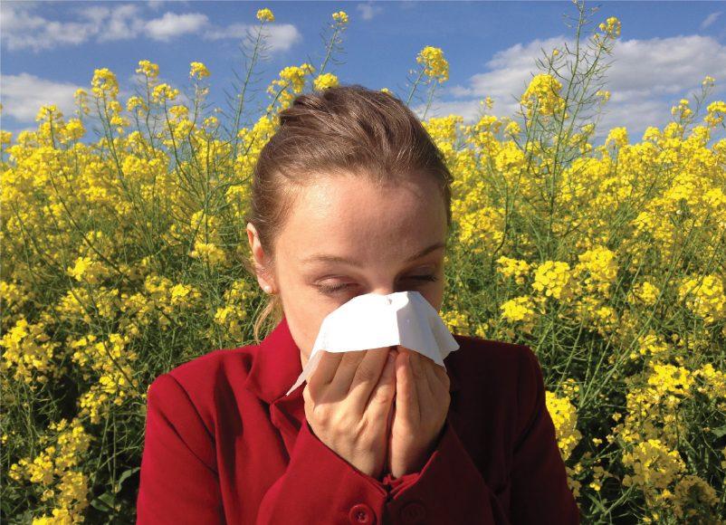 שינוי האקלים יחמיר את מצבם של אנשים הסובלים מאלרגיה