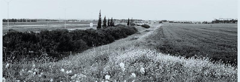 מסדרונות אקולוגיים בישראל – מתאוריה ליישום