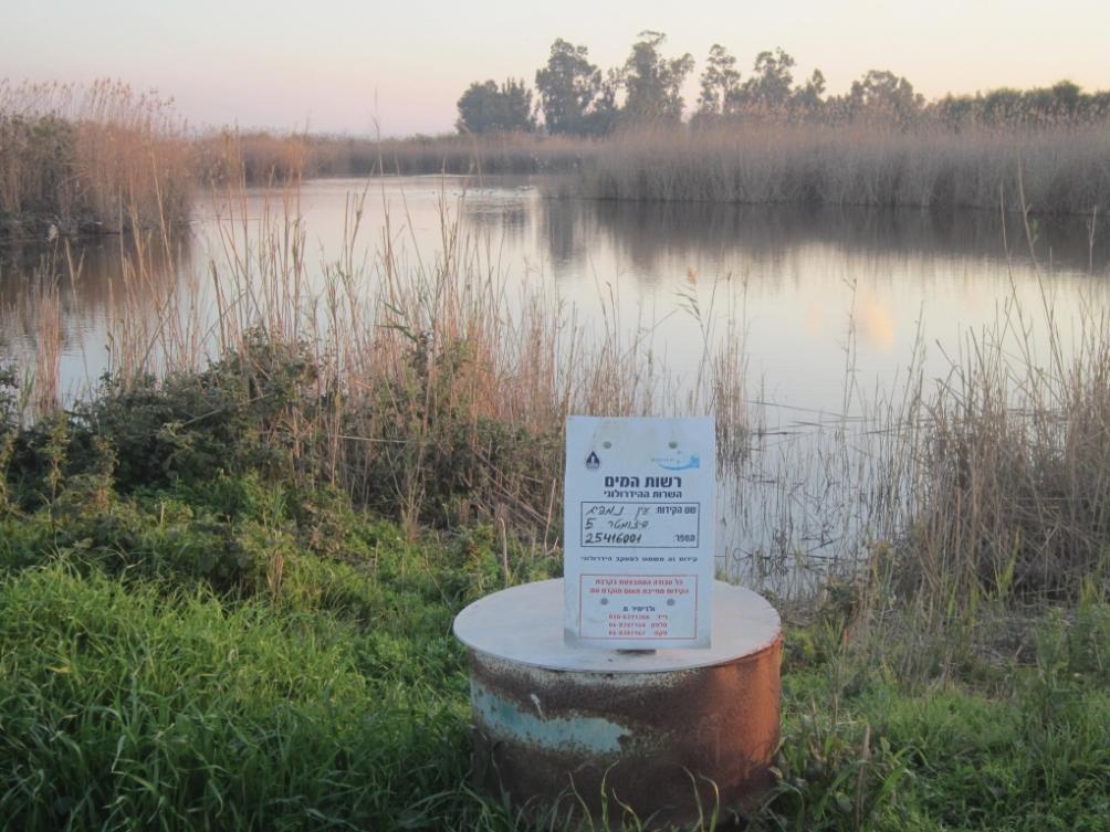 זכות הטבע למים? דילמות בשיקום נחלי ישראל לנוכח השינויים במשק המים