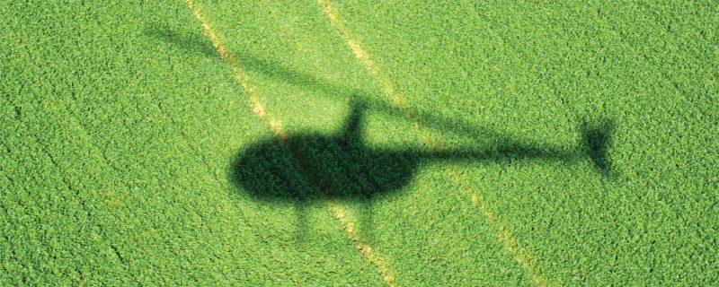 שימוש בתצפיות אוויריות לאומדן התייבשות עצים ולהתאמת תוכניות ממשק לצמצום נזקי חיפושיות קליפה ביערות