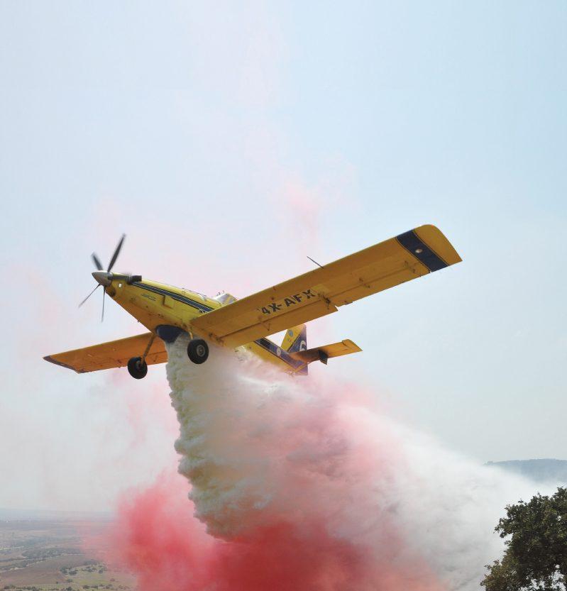 הגורמים לשריפות ביערות ובחורשים בישראל ועלות כיבוין