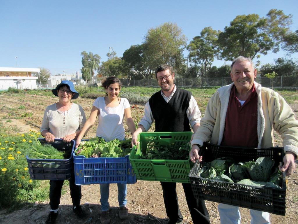 חקלאות עירונית – העיר כיצרנית מזון לתושביה
