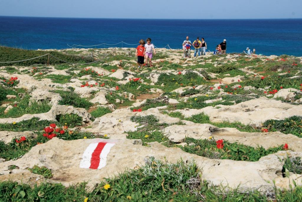 מידת ייצוגן של יחידות אקולוגיות טבעיות בשטחים המוגנים בישראל