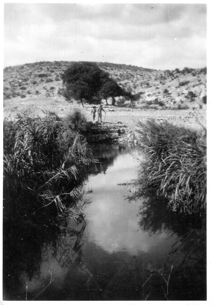 תכניות מים לנחלים – מחזון ליישום: צעדים מעשיים לשיקום זרימת המים בנחלי ישראל
