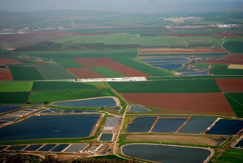 האם קרקעות ישראל מאפשרות ייצור מזון בהיקף הנדרש לאוכלוסייה הגדֵלה?