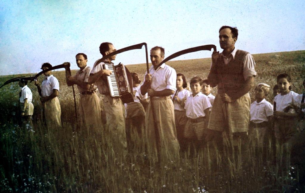 הפרטת החקלאות מאיימת על יכולת אספקת המזון העתידית מחקלאות ישראל ללא פגיעה בסביבה