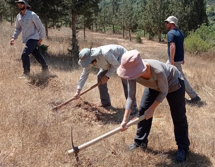 בשורה לניהול היערות והשטחים הפתוחים בישראל: תוכנית יערני העתיד יצאה לדרך