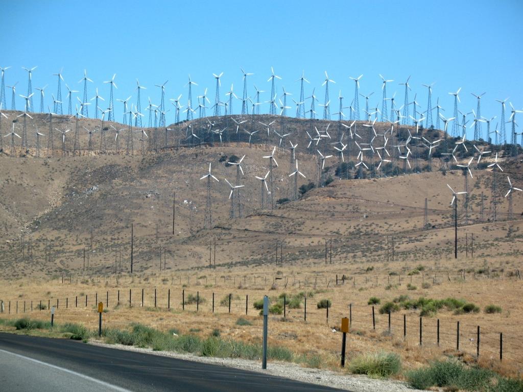 כורח השעה – הקמת חוות לייצור אנרגיה מרוח