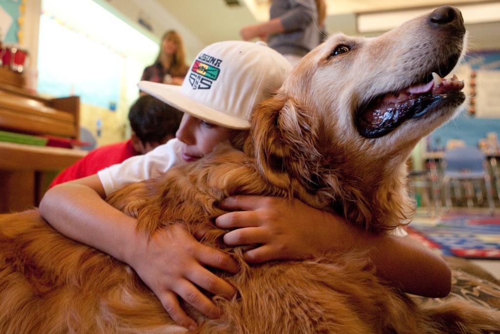 'בריאות אחת' – רפואה, בריאותם של בני אדם ושל בעלי חיים ושימור הסביבה