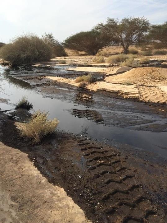 דליפת הנפט במלחת עברונה – תשתית מזהמת בלב אזור רגיש