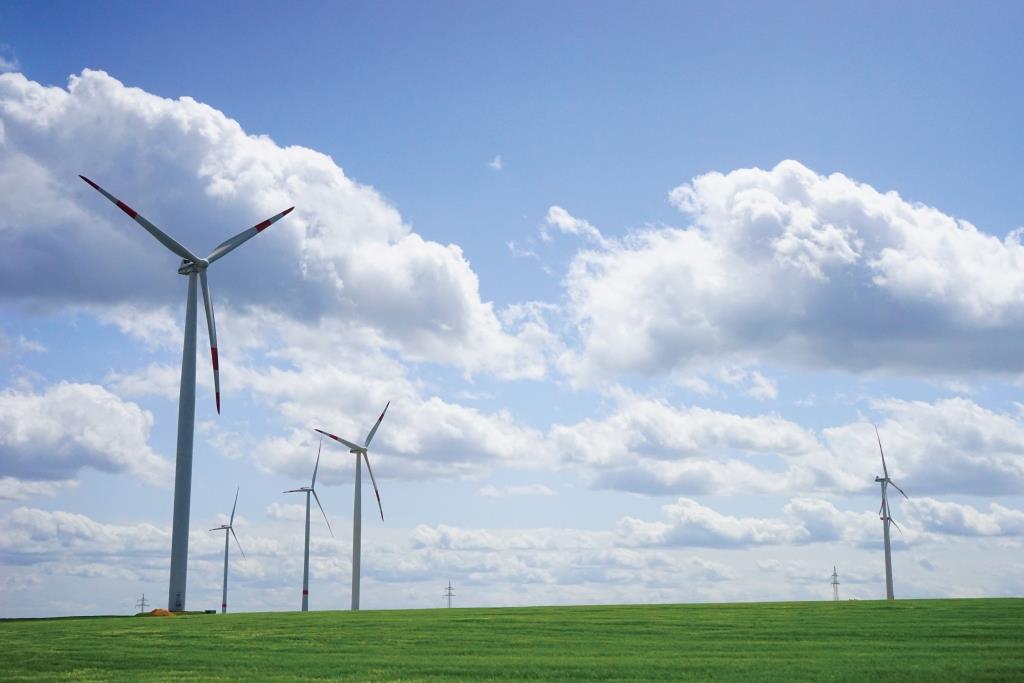 'האנרגיה הירוקה' היא לא כל כך ירוקה